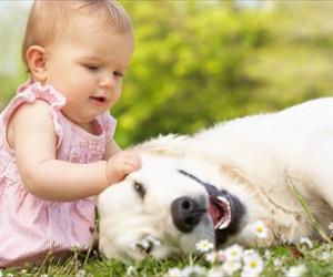 Copilul și animalul de companie